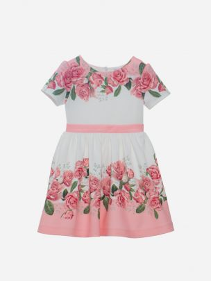 Pink Roses Neoprene Dress