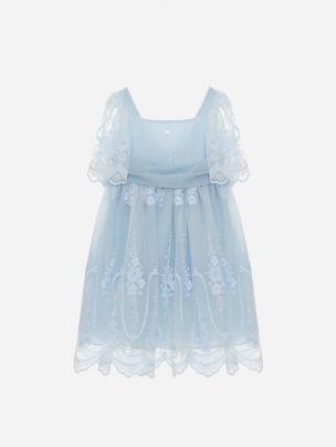Blue Tulle Dress